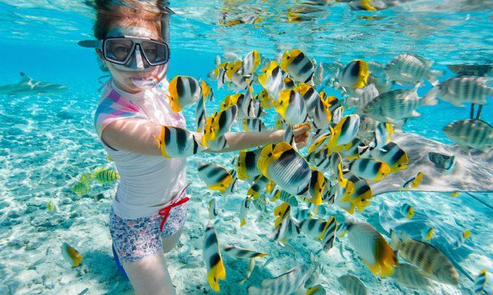 snorkeler with fish Mirum exclusive